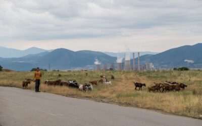 Displaced by coal (part one)